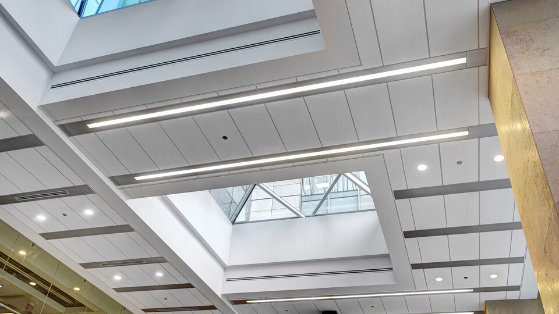 Featured products: Rockfon® Planar® Macro and Planar® Macroplus® Linear Ceilings - Rockfon® Planostile™ Lay-in Metal Panel Ceiling System - Rockfon® Infinity™ Z Perimeter Trim - Rockfon® Spanair® Plank Hook-on Metal Panel Ceiling System