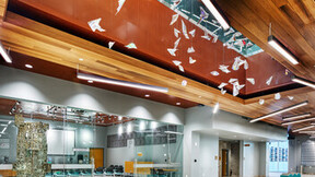 NA-Wichita Advance Learning Library, education, Planostile Snap-in, Infinity, copper metallic